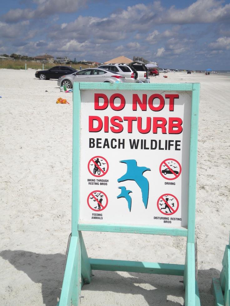 Laudes Apollo Beach The Best Beaches In World