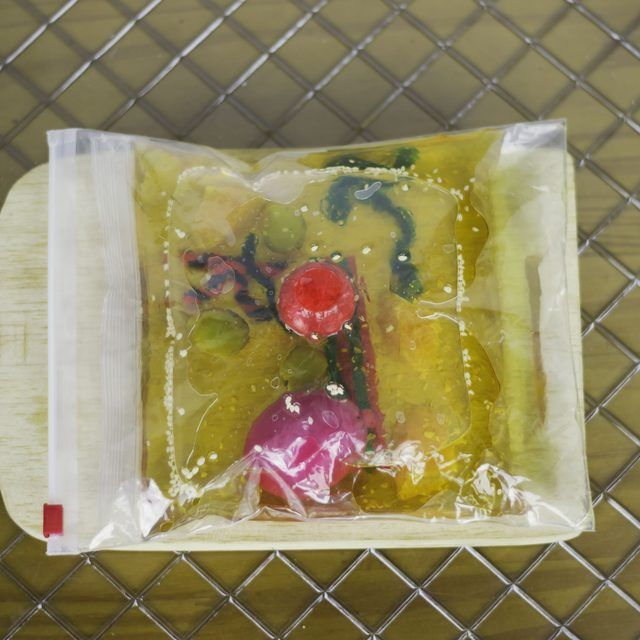How to Build a 3D Model of a Plant Cell