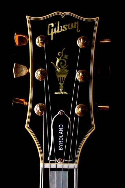 Gibson Byrdland - Headstock
