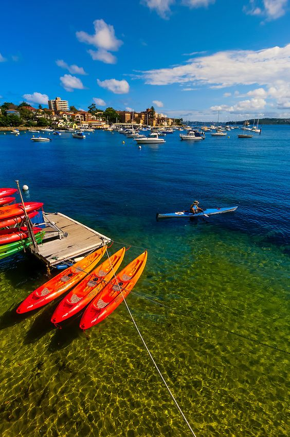 Manly Kayak Centre, in the harbor, Manly, Sydney, New South Wales, Australia.