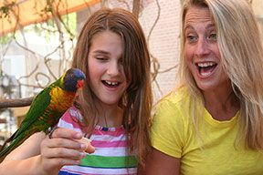 On hot days when you would like to stay close to sea life, but escape the beating sun visit the Maritime Aquarium in Norwalk, Connecticut! #aquarium #fish #maritime #ct #norwalk #jeanbailey #summer #sea #ocean #fish #fun #family #bird #lorikeet #tropical http://connecticutliving.net/jeannebailey/2013/07/maritime-aquarium-norwalk-connecticut/