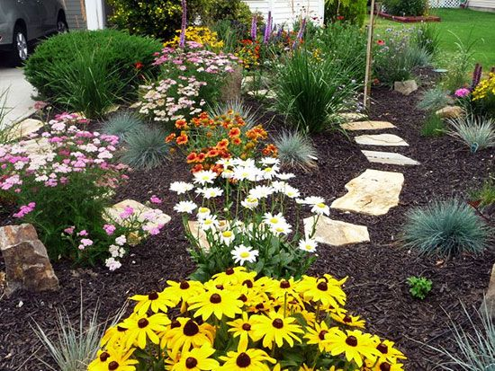 41 best images about xeriscape on pinterest landscaping for Garden design xeriscape