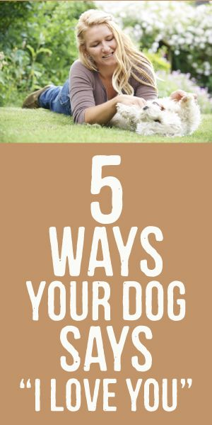 "5 Ways Your Dog Says, ""I Love You"""
