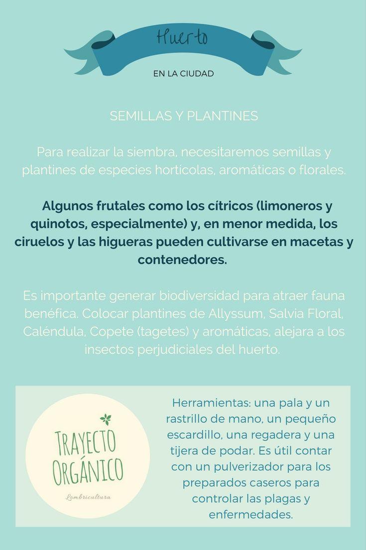 Huerto Urbano: Como conseguir las condiciones iniciales ideales para prevenir plagas.