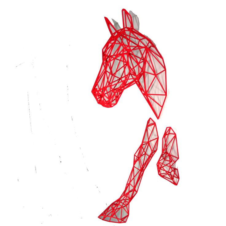 3D imagery is getting cheaper! A small horse trots out of a wall. for just £70. A bit fragile but it comes in a good box so should arrive home at its new stable intact. #equus or #horse - they are better than this photo is!