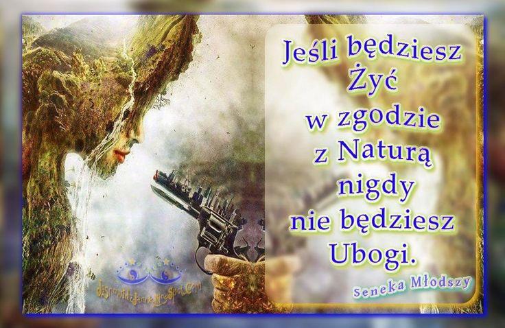 Zgoda z Natura Seneka Mlodszy   http://jasnowidzjacek.blogspot.com