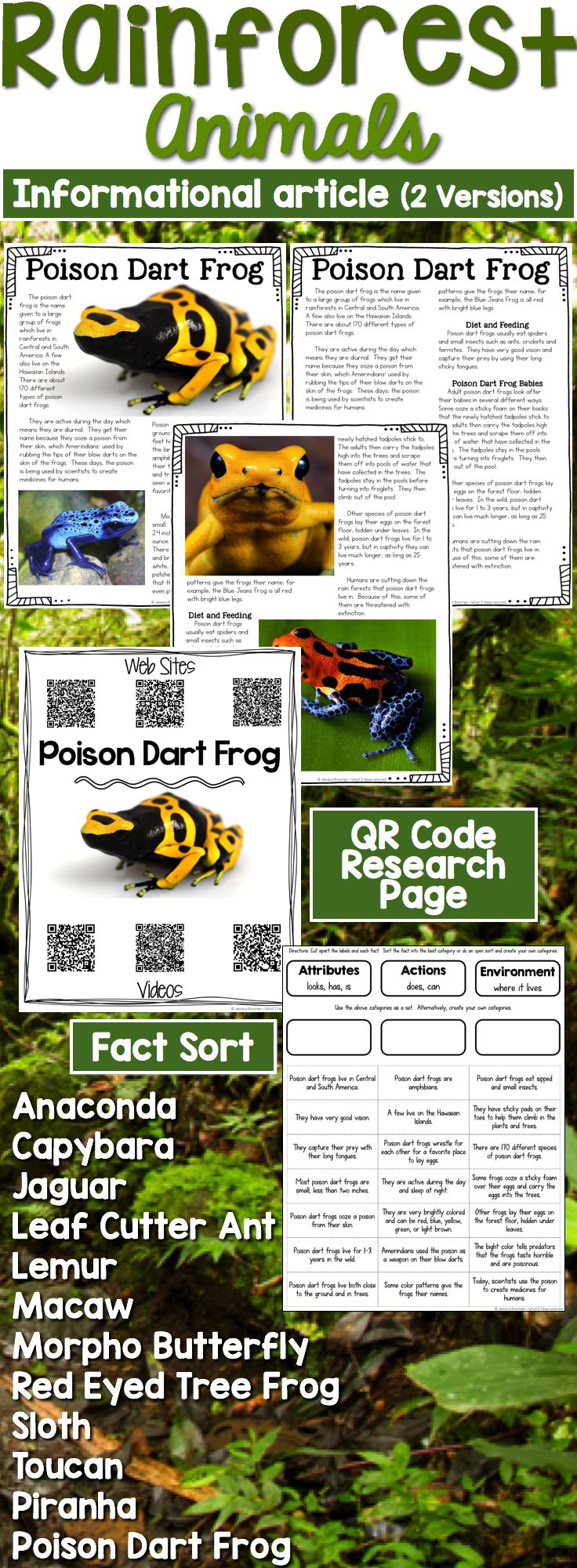 Rainforest Animals: Informational Article, QR Code Research Page & Fact Sort is a set of 12 informational articles all about Rainforest Animals. These articles are full of interesting facts and details that students can use during reading and writing activities.