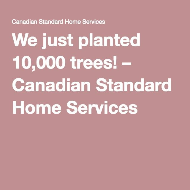 We just planted 10,000 trees! – Canadian Standard Home Services