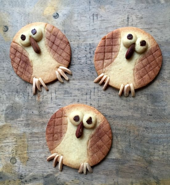 Biscuit chouette biscuit hibou