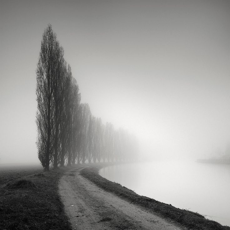 Sinuosity xi photography medium format film by pierre pellegrini
