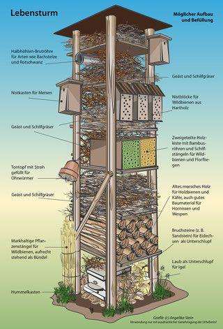 Lebensturm, Naturschutz, Grafik, Zeichnung, Angelika Stein