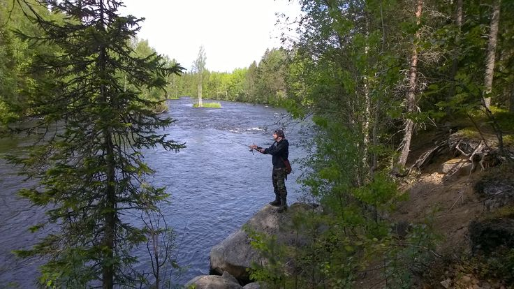 River Fly Fishing in Simojoki, Ranua #flyfishing#simojoki