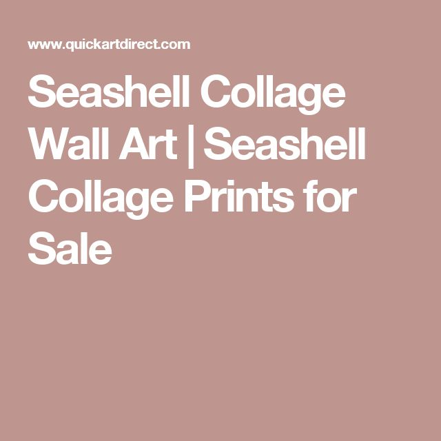 Seashell Collage Wall Art | Seashell Collage Prints for Sale