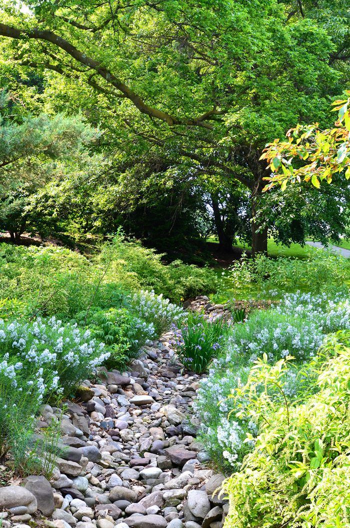 Scott Arboretum at Swarthmore College
