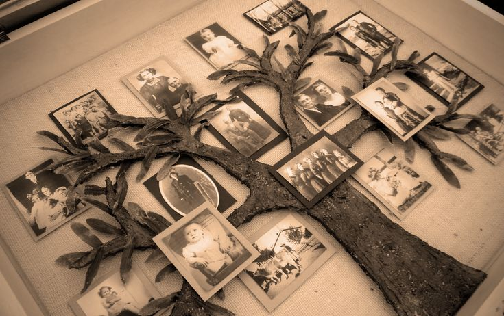 ¿Cómo hacer tu árbol genealógico? | Memoria Emocional