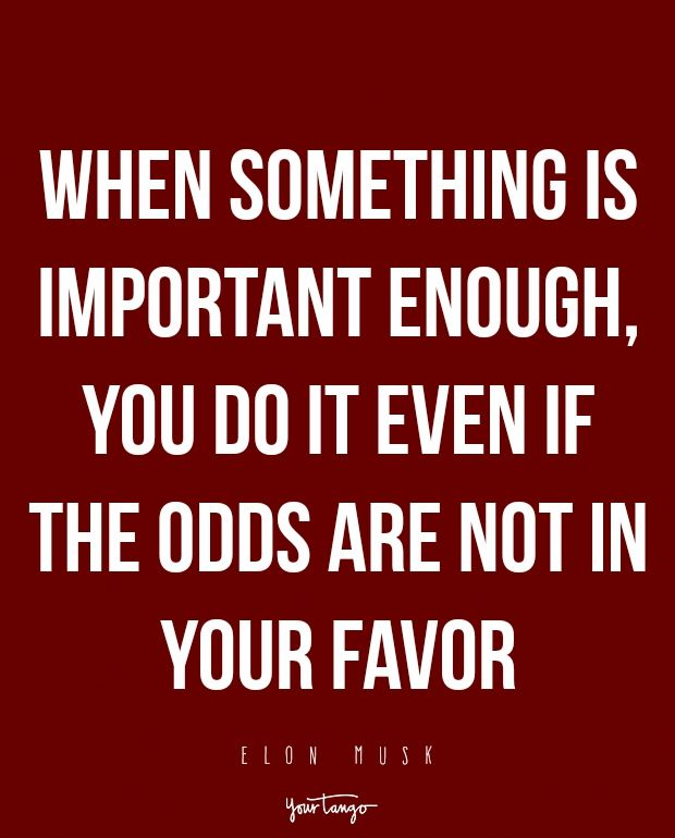 When something is important enough, you do it even if the odds are not in your favor.  — Elon Musk
