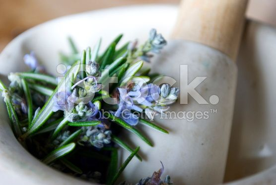 Fresh Rosemary in Pestle & Mortar (Soft Focus) royalty-free stock photo