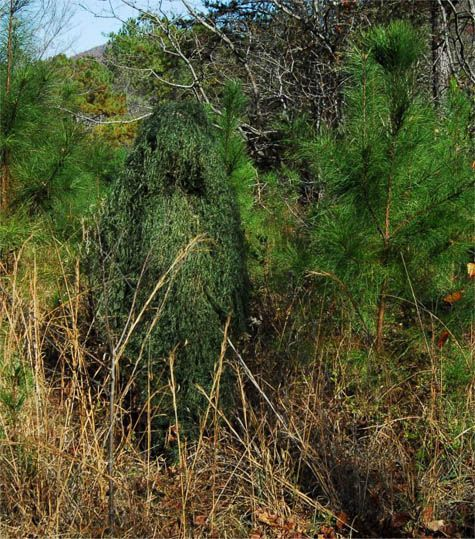 Awesome Camouflage: Hunter Wearing a Ghillie Suit