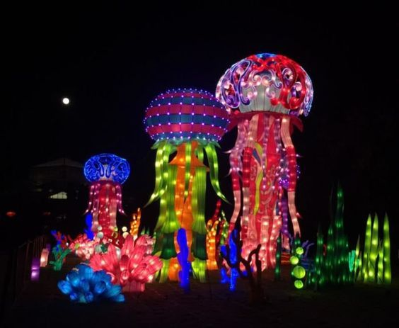 """Deemed """"The Wild,"""" more than 800 handmade lanterns fill the 12-acre garden, showcasing life-size (and sometimes larger) displays of animals from all seven continents and the surrounding oceans. This is at Daniel Stowe's Botanical Garden"""