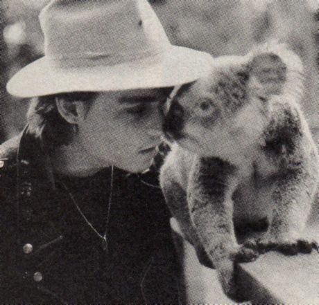 It's pretty abvious that Johnny is cuter then the koala!