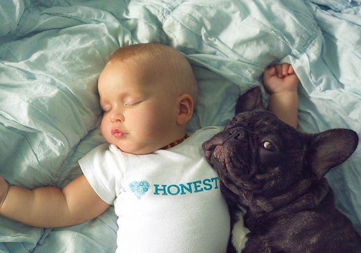O nascimento de um bebê é motivo de muita emoção e alegria para a família, que volta toda a sua atenção para os cuidados com o pequeno. E quem tem um cachorro em casa sabe que a melhor forma de não causar ciúmes no animal é incluí-lo na adaptação com o bebê, afinal eles serão praticamente irmãos rs. E essa nova relação tem inspirada muitos pais e fotógrafos a realizar ensaios exclusivos de fotos de bebês com cachorros. Selecionamos alguns cliques incríveis de fotógrafos com a proposta!