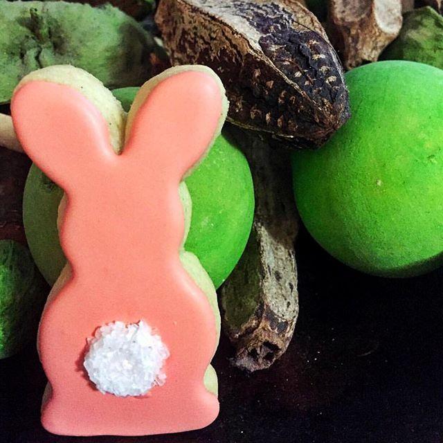 Best 25 Easter Bunny Cake Ideas On Pinterest Bunny