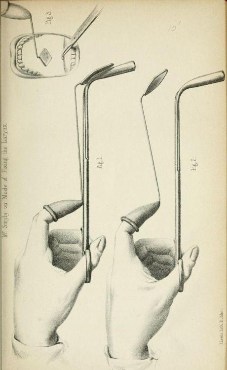 194 Human Anatomy and Physiology by Elaine N. Marieb and Katja N. Hoehn (2012)