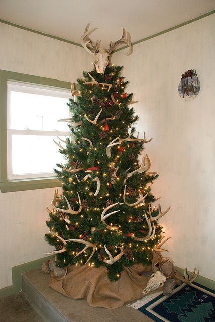 With Galvanized tub at base and a few shot gun shells over some lights...Yep..there's our Christmas tree this yr ha ha!
