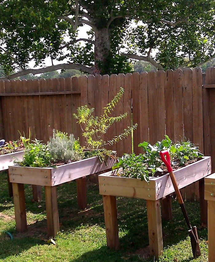 Does Tending to Your Plants Make it Hard For Your Back? This Waist High Planter Box is The Solution