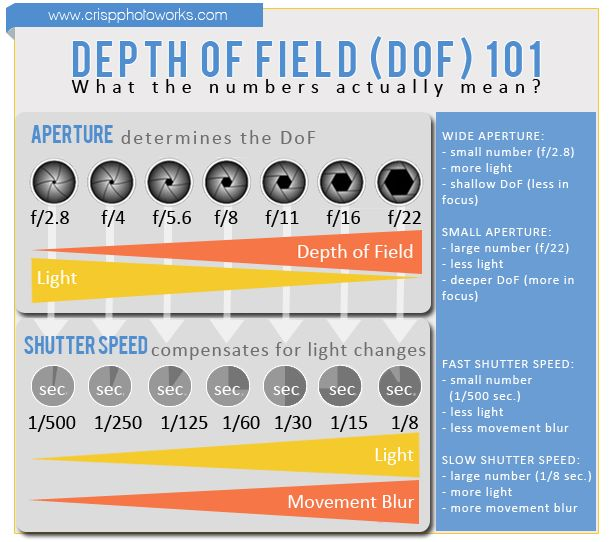 depth of field chart pdf