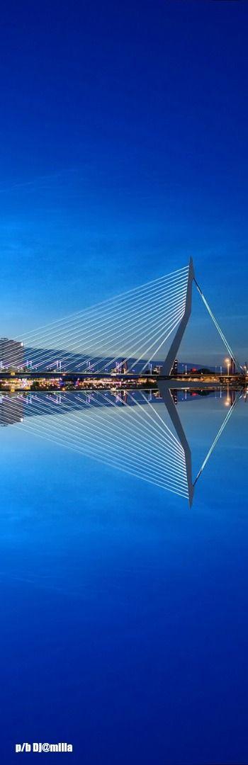 Erasmusbrug Rotterdam - The Netherlands