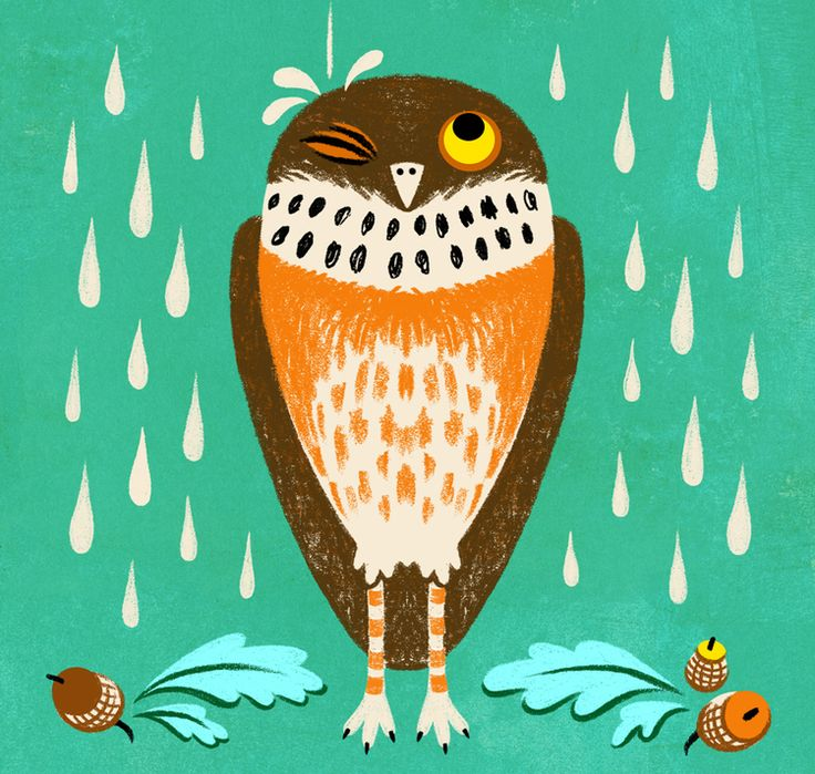 Why we all need a Soggy Owl — Alisa Coburn - Illustration