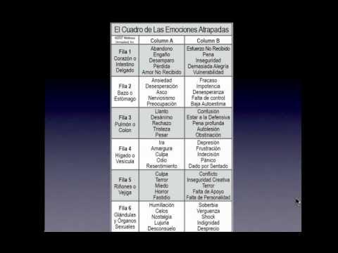 6. El Codigo de la Emocion Webinar 5-27-10 (The Emotion Code Webinar)