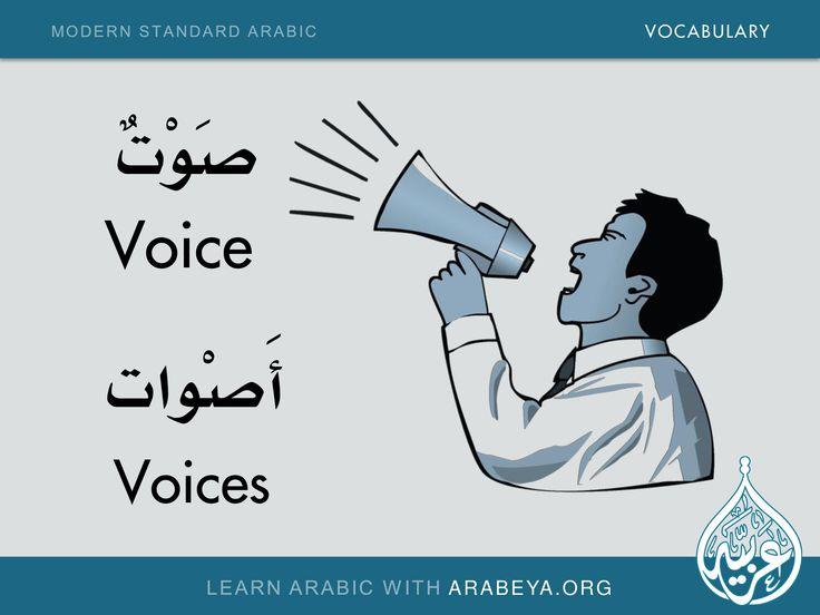 Voice - Voices