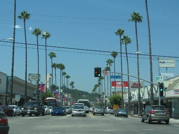 Studio City - Ventura Blvd. & Laurel Cyn. (02/14/2009)