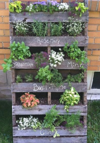 upcycled wood pallet vertical herb garden in 2020 | herb