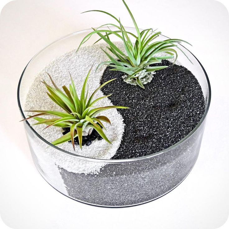Yin Yang Black White Sand Glass Terrarium Zen Garden Home Decor Centerpiece