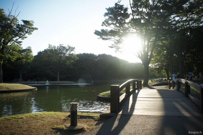 Parc Yoyogi à Tokyo