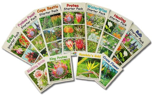 Fine Bush People | suppliers of fynbos and protea seeds