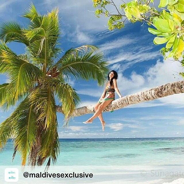 Maldives Paradise #maldives #paradise #maldivesparadise #maldive #malediven #luxury #Мальдивские #острова #モルディブ #马尔代夫 #몰디브 #island #scuba #diving #scubadiving #snorkeling #surfing #sailing #honeymoon #wedding #travel #holiday #relaxation #spa #resort #wellness #beach #whitesand #beauty #photooftheday Follow! by maldives.mv