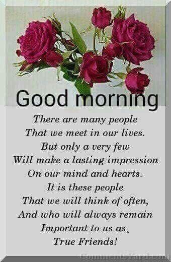 Good Morning True Friends