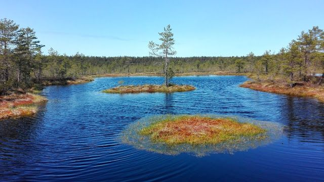 erasmus.ee: Estonia and it´s national parks, beautiful nature!