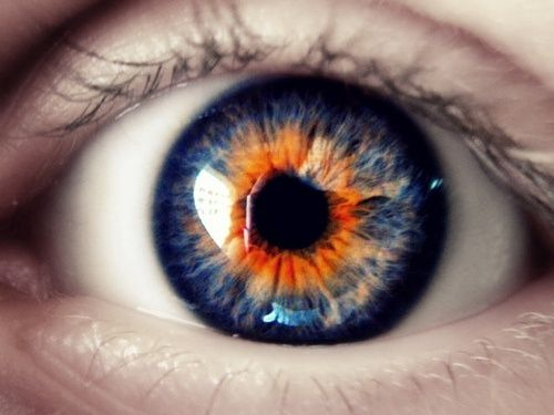 Colors | Orange & Blue by Eva