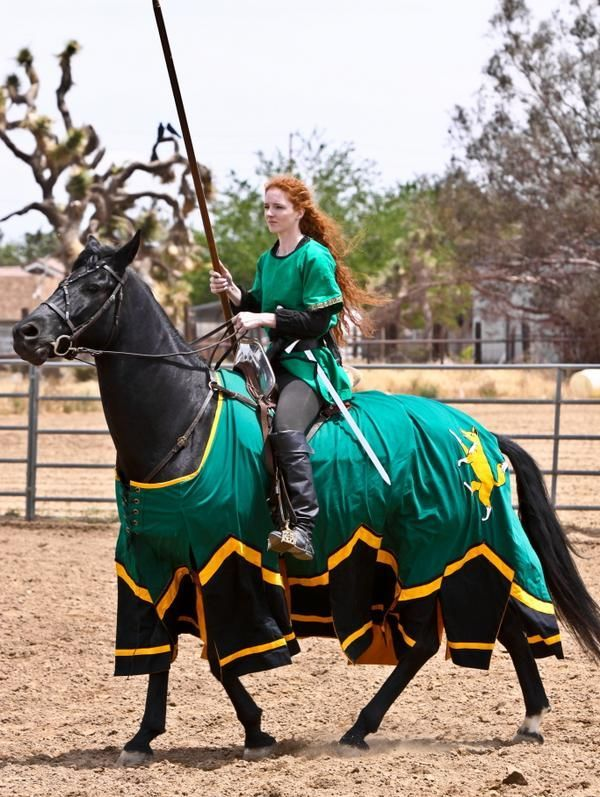 Image result for caparison horse