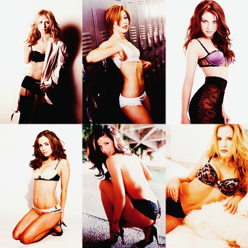 buffy ladies & their lingerie. sarah michelle gellar. alyson hannigan. michelle trachtenberg. eliza dushku. charisma carpenter. emma caulfield.