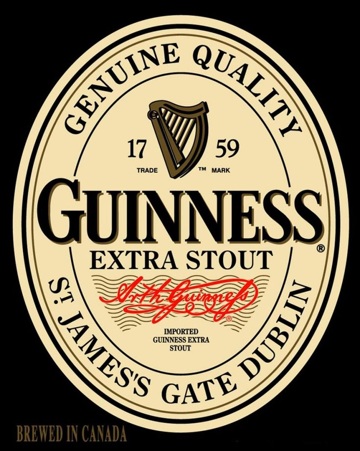 Image result for guinness extra stout