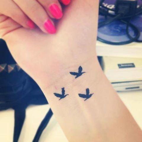 Birds pols