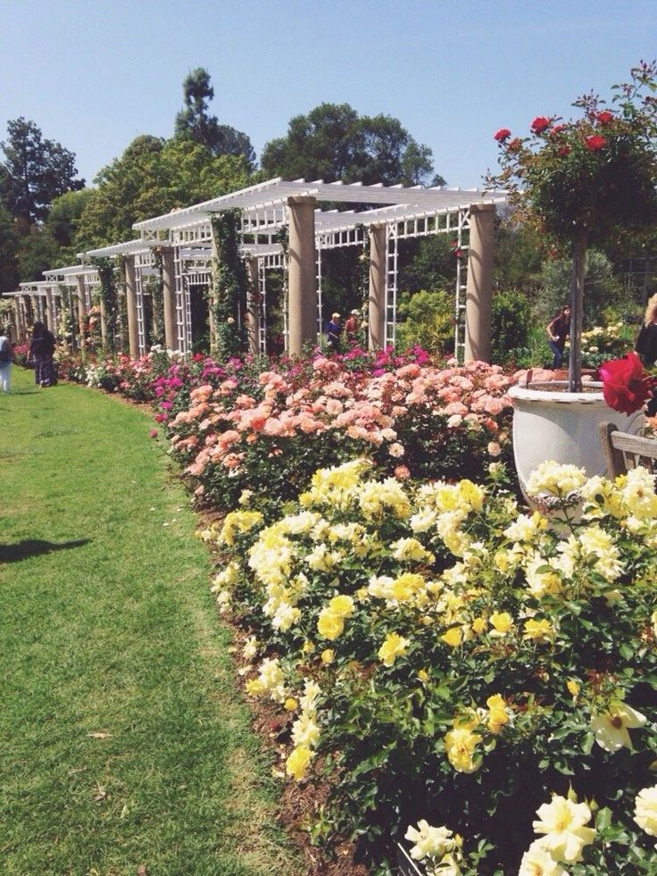 Superbe Huntington Library Art Collections U0026 Botanical Gardens   San Marino, CAu2026