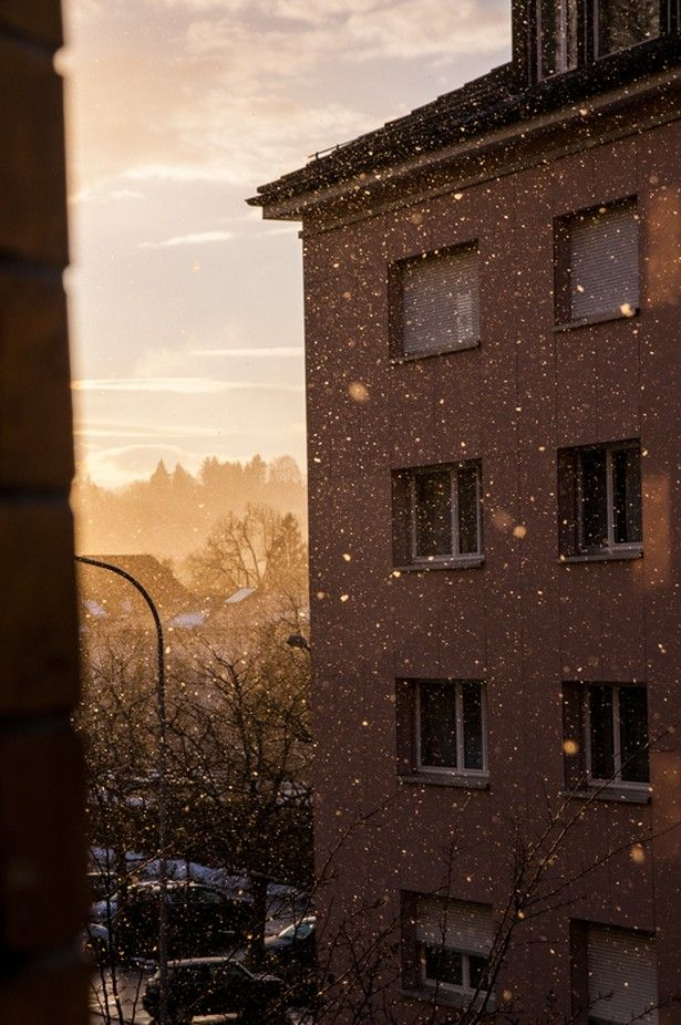 Snow flakes filtered by the sun