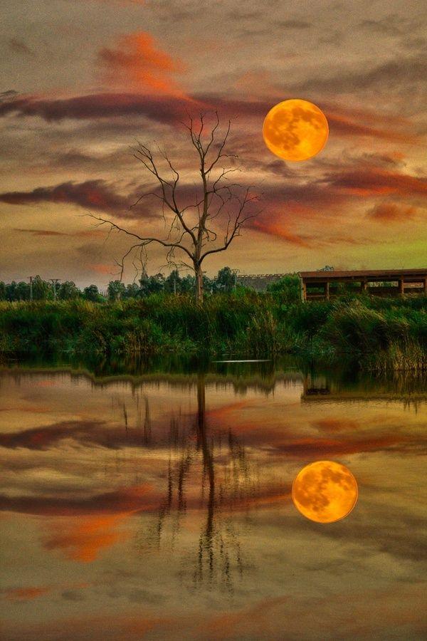 Amazing Snaps: Copper Sun